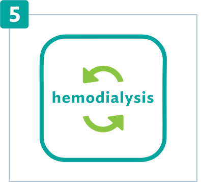Connect the access site to the hemodialysis machine.