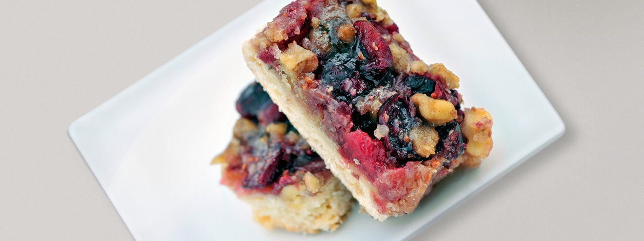 Dried fruit bars wide enlarged